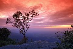 Beautiful sunset on cliff Stock Image