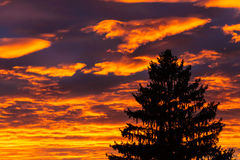 Beautiful sunset clouds on orange sky Royalty Free Stock Photography