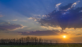 Beautiful sunset at countryside and trees Stock Photo