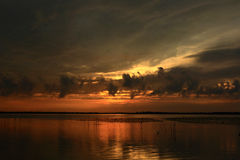 Beautiful sunset. In the Danube Delta Stock Image