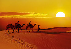 Beautiful sunset at desert , Jaisalmer,India
