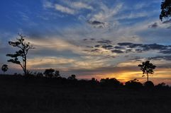 Beautiful sunset in farm royalty free stock photos