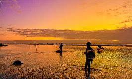 The beautiful sunset with the fisherman royalty free stock photos