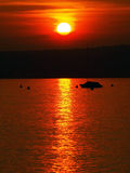 Beautiful sunset on the Garda lake Royalty Free Stock Photography
