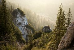 Beautiful sunset, golden hour in mountains, above the forest. In Piatra Craiului, Romania Royalty Free Stock Image