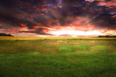 Beautiful Sunset on a green lawn. Beautiful sunset. amazing green grass field with dramatic sky and sun rays Stock Photo