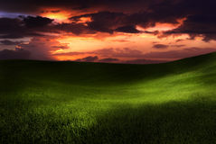 Beautiful sunset on a green meadow royalty free stock photo