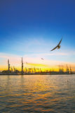 Beautiful sunset in Hamburg stock images