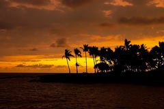 Beautiful sunset on Hawaii tropical beach Stock Photo