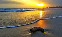 Beautiful sunset. A beautiful sunset on the Ke Ga beach Stock Images