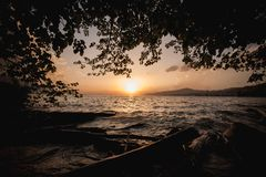 Beautiful sunset on the lake Geneva in Switzerland. Through tree Royalty Free Stock Photography
