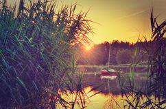 Beautiful sunset on the lake. Sun and boat between grasses on the water stock images