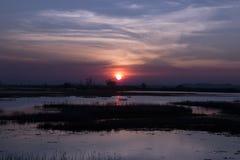 Beautiful sunset on the lake. Royalty Free Stock Photo