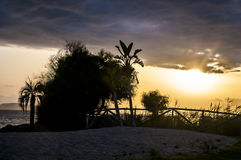 Beautiful sunset landscape on tropical beach with palms in sardegna italy. Beautiful sunset landscape on the tropical beach with palms in sardegna italy stock photography
