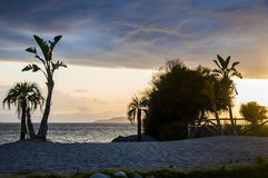 Beautiful sunset landscape on tropical beach with palms in sardegna italy. Beautiful sunset landscape on the tropical beach with palms in sardegna italy royalty free stock photography