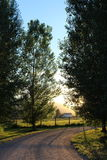 Beautiful sunset large trees rural farm countryside Stock Photo