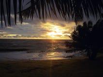 Very Beautiful sunset in Liberia,Africa stock photos