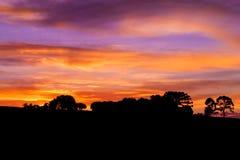 Beautiful sunset light Royalty Free Stock Photos