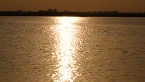 Beautiful sunset light water texture stock video footage