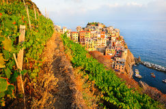 Beautiful sunset in Manarola Stock Images