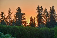 Sunset by the garden Royalty Free Stock Images