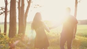 Beautiful sunset in nature. Lovers walk in forest, hold hands woman touches leaves. Slow mo, steadicam shot, backview stock video footage