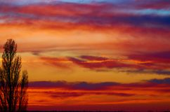 Beautiful sunset with nice colours  of clouds.. Beautiful sunset with nice colours of clouds red,yellow,blue and a silhouette of a tree Royalty Free Stock Images