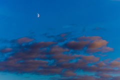 Beautiful sunset with orange clouds, deep blue sky and moon Royalty Free Stock Photo