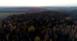 Beautiful sunset over the autumn forest. Aerial. Autumn forest at sunset Trees of different colors. 4K footage. Aerial stock video footage
