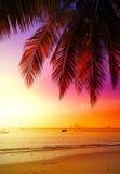 Beautiful sunset over beach. Stock Photos