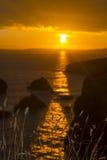 Beautiful sunset over the coastal rocks with wild highl grass Stock Photos