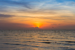 Beautiful sunset over coastline. Natural landscape background Royalty Free Stock Images