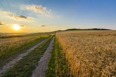 Beautiful sunset over countryside dirt gravel road and ripe whea. T fields Royalty Free Stock Photo