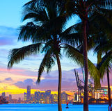 Beautiful sunset over  Downtown and the Port of Miami. Beautiful colorful sunset skyline panorama with silhouettes of Palm trees Royalty Free Stock Image