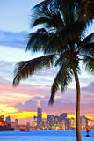 Beautiful sunset over  Downtown and the Port of Miami. Beautiful colorful sunset skyline panorama with silhouettes of Palm trees Stock Photos