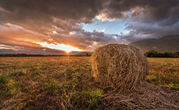 Beautiful sunset over a field. Stock Photography