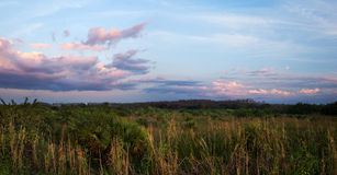 Beautiful sunset over Florida Everglades Stock Photography