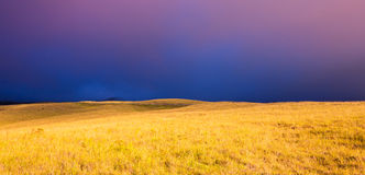 Beautiful Sunset over Golden Field Royalty Free Stock Photography