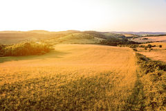 Beautiful sunset over the green hills. Stock Image