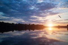 Beautiful sunset over the lake with bird in the sky Stock Photo
