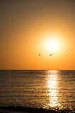 Beautiful sunset over the ocean Royalty Free Stock Photos