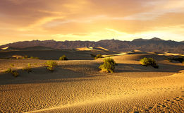 Beautiful sunset over the sand dunes Stock Image