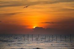Beautiful sunset over sea coast Royalty Free Stock Photo