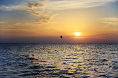 Beautiful sunset over sea Royalty Free Stock Image