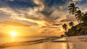 Beautiful sunset over the sea with a view at palms Stock Image