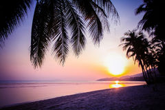 Beautiful sunset over the tropical beach Royalty Free Stock Photography