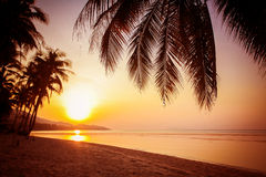 Beautiful sunset over the tropical beach Royalty Free Stock Photo