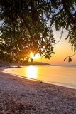 Beautiful sunset over the tropical beach Stock Images