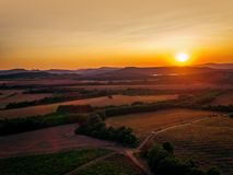 Beautiful Sunset over vineyard in Europe, aerial view Stock Photography