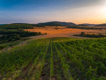 Beautiful Sunset over vineyard in Europe, aerial view Royalty Free Stock Images